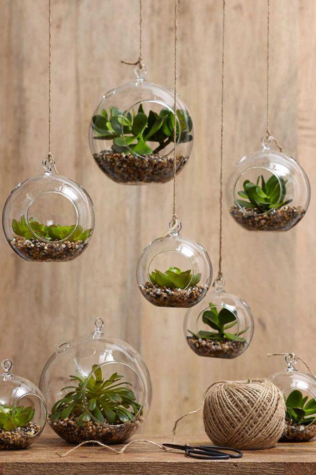 vasetti di piante sospese per bagno piccolo
