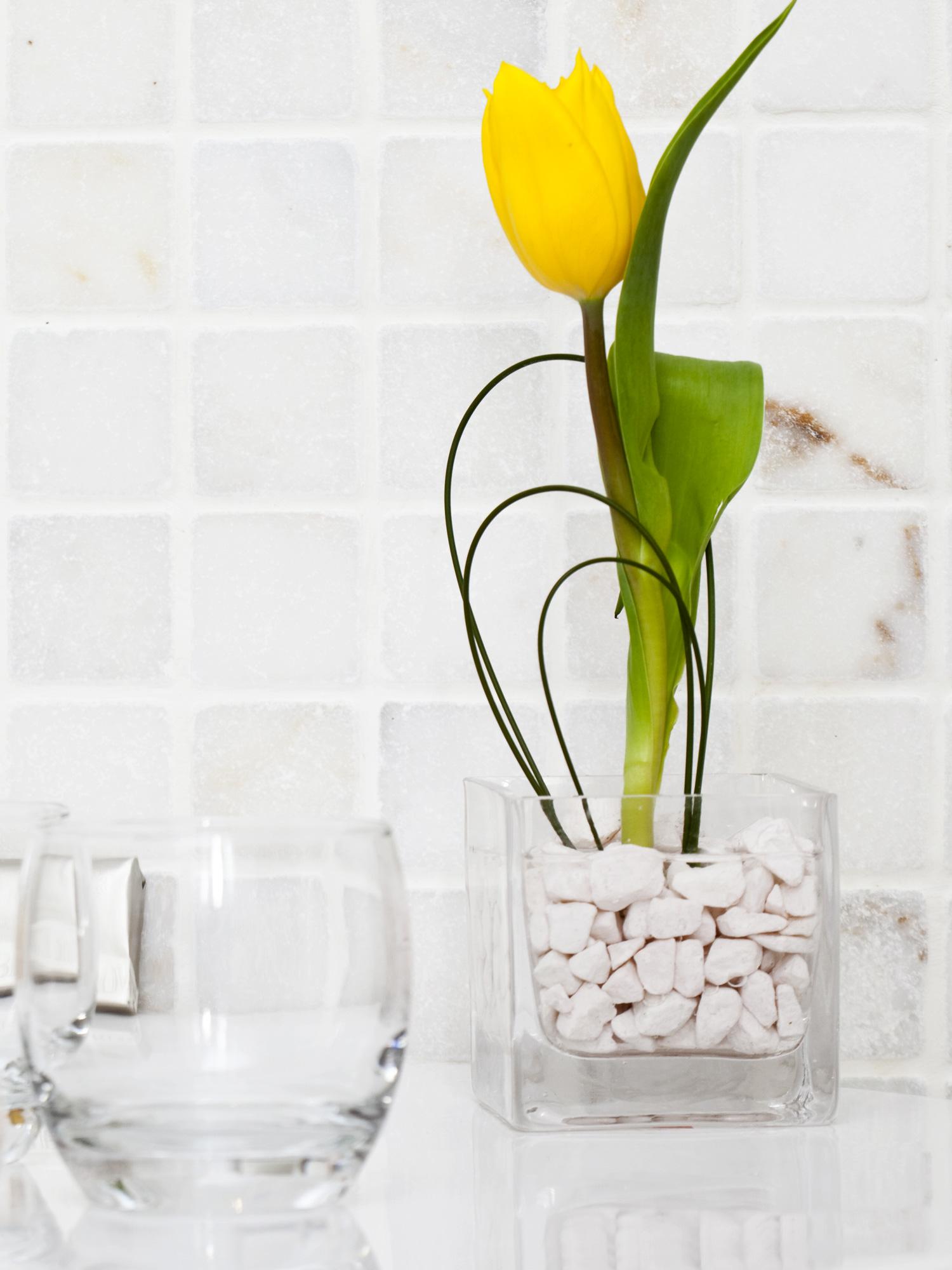 Piante da bagno come sceglierle in base all 39 esigenza for Arredare casa con le piante
