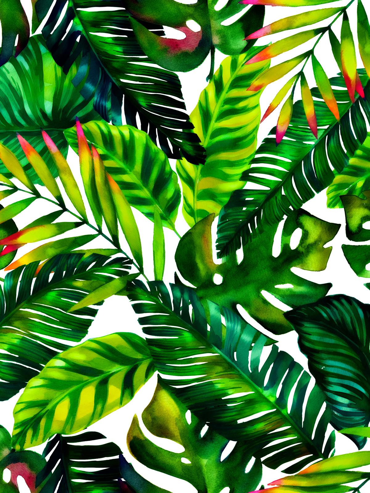Piante Da Arredo Interno : Selvaggio e tropicale l arredamento di tendenza del